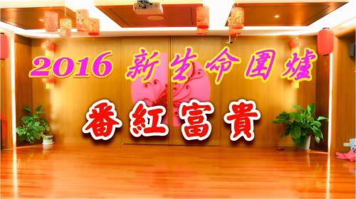 【新生命】番紅富貴 2016圍爐